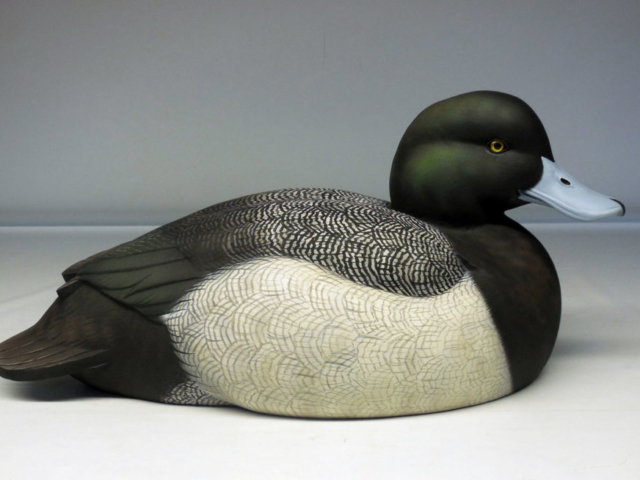 Greater Scaup duck decoy by Jason Lucio