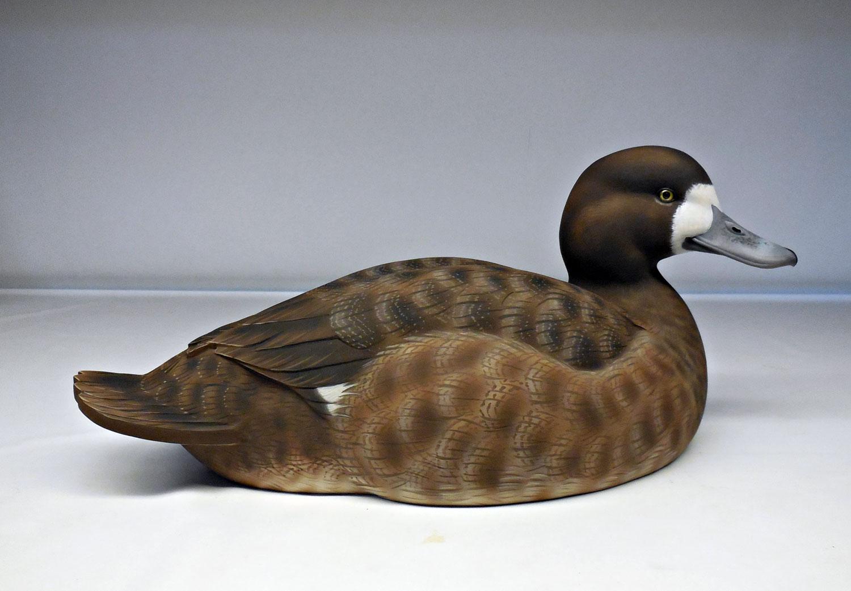 Greater Scaup hen duck decoy by Jason Lucio