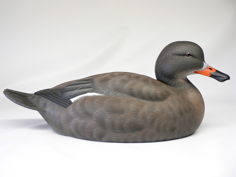 Labrador Duck Hen duck decoy by Jason Lucio