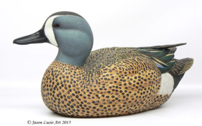 Blue-winged Teal drake decorative decoy by Jason Lucio