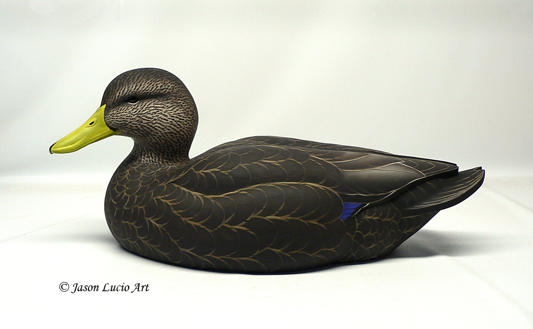 Black Duck decoy by Jason Lucio