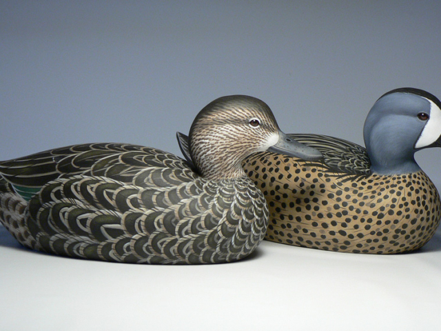 Blue-winged Teal pair duck decoy by Jason Lucio