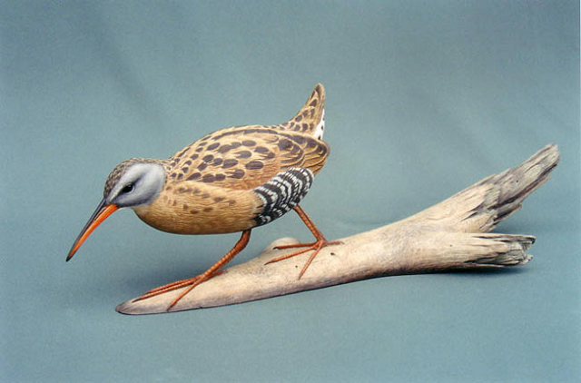 Virginia Rail carving by Jason Lucio