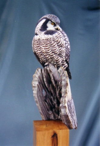 Northern Hawk-owl carving by Jason Lucio